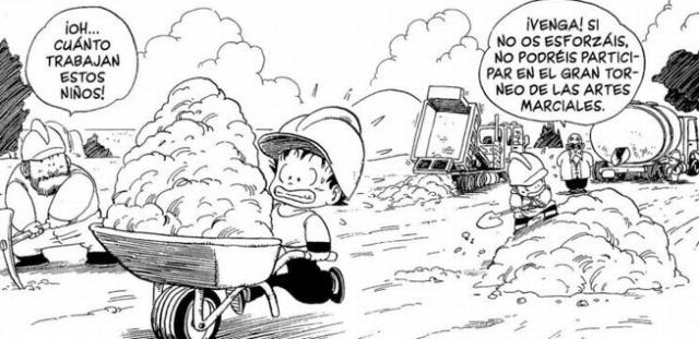 Explotacion infantil Goku Krilin entrenamiento