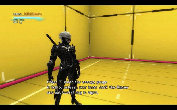 Metal Gear Rising Raiden VR