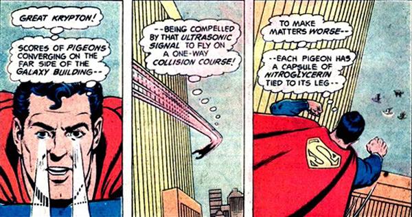 superman-cary-bates-pigeons